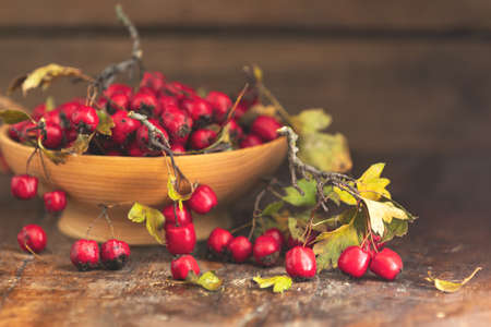 Autumn harvest Hawthorn berry with leaves in bowl on a wooden table background. Copy space. Dark rustic style. Natural remedy Stock Photo