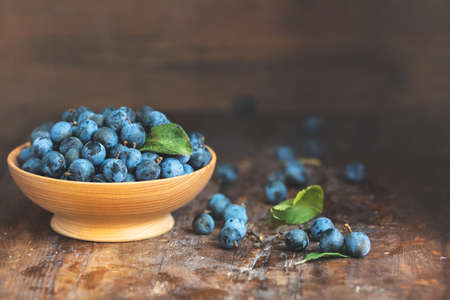 Autumn harvest blue sloe berries on a wooden table background. Copy space. Dark rustic style. Natural remedy Stock Photo