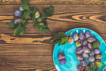 Many juicy beautiful amazing nice plums in blue plate on dark wooden background. Beautiful food art background. Top view, copy space. 免版税图像