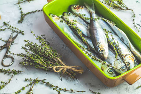 Sardines or baltic herring on green dish with thyme on light gray concrete table surface. Raw uncooked sea fish. Archivio Fotografico