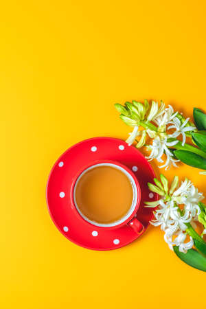 Red in white dotted cup of tea beside white hyacinths on yellow surface background. Minimalism, top view, copy space for text. Stock Photo