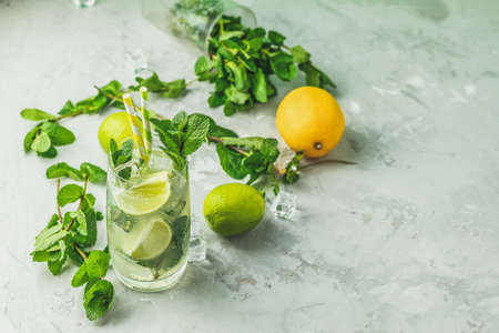Mojito cocktail with lime and mint in highball glass on a gray and green concrete stone surface background. With copy space for text