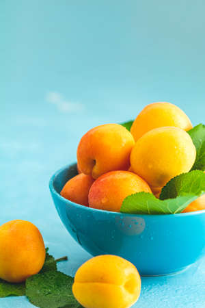 Fresh sweet orange apricots in blue bowl on the blue concrete surface table, selective focus, shallow depth of the fields Stock Photo - 126343726