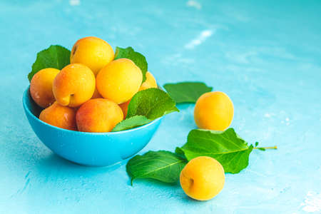 Fresh sweet orange apricots in blue bowl on the blue concrete surface table, selective focus, shallow depth of the fields Stock Photo - 126343733