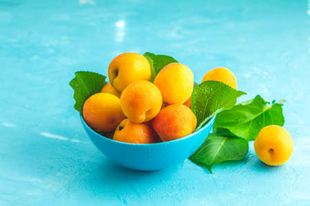 Fresh sweet orange apricots in blue bowl on the blue concrete surface table, selective focus, shallow depth of the fields Stock Photo - 128302894