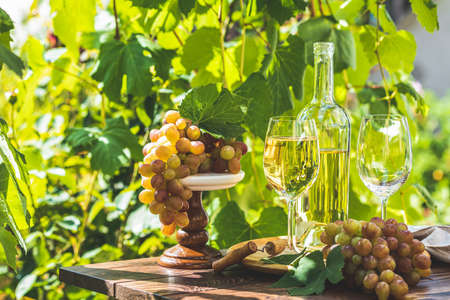 Grape and white wine. Green grape and white wine in vineyard. Sunny garden with vineyard background, summer mood concept, selective focus Stock Photo - 128861736