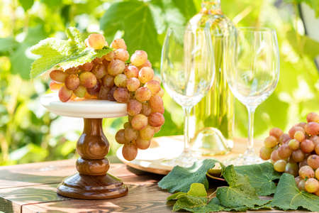Bunch of grapes with water drops on the table. Wine glasses and bottle of wine. Sunny garden with vineyard background, summer mood concept, selective focus Stock Photo - 128861611