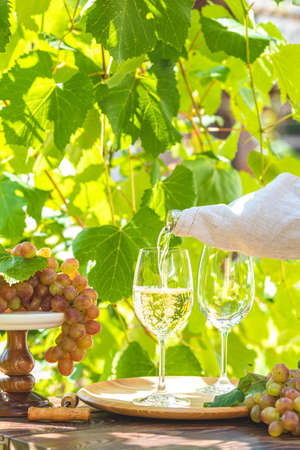 Pouring wine in glass. Green grape and white wine in vineyard. Sunny garden with vineyard background, summer mood concept, selective focus Stock Photo - 129689228