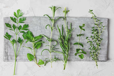 Herbs and spices. Fresh herbs selection included rosemary, thyme, mint, lemon balm, parsley and arugula. Overhead view, copy space