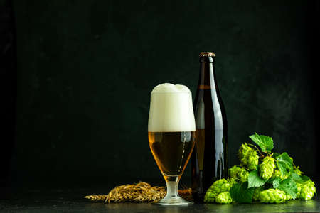 Glass of cold foamy beer brown bottle of beer and hop on a dark background. Stock Photo - 129770181