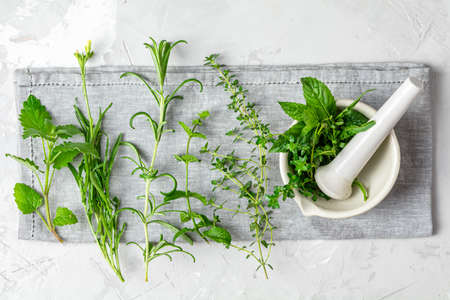Mortar with herbs and spices. Fresh herbs selection included rosemary, thyme, mint, lemon balm, parsley and arugula. Overhead view, copy space. Stock Photo - 129770284