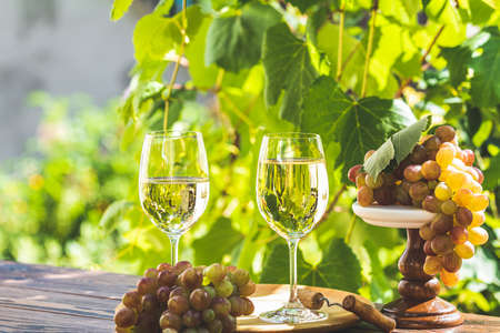 Traube und Weißwein. Grüne Traube und Weißwein im Weinberg. Sonniger Garten mit Weinberghintergrund, Sommerstimmungskonzept, selektiver Fokus