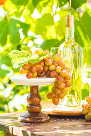 Bunch of grapes with water drops on the table. Wine glasses and bottle of wine. Sunny garden with vineyard background, summer mood concept, selective focus Stock Photo - 130484298