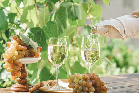 Pouring wine in glass. Green grape and white wine in vineyard. Sunny garden with vineyard background, summer mood concept, selective focus Stock Photo - 130485826