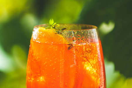cocktail in big wine glass with oranges, summer Italian fresh alcohol cold drink. Sunny garden with vineyard background, summer mood concept, selective focus