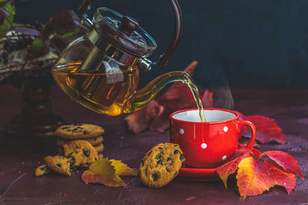 Pouring hot tea in red in white dotted cup. Autumn teatime composition on dark background with colored leaves and chocolate cookies. 写真素材 - 132823534