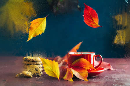 Red in white dotted cup of hot tea. Autumn teatime composition on dark background with colored leaves and chocolate cookies behind the glass with water dew drops. Selective focus Stock Photo