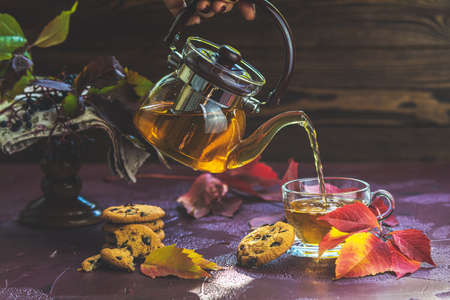 Woman poured hot tea in red in cup. Autumn teatime composition on dark background with colored leaves and chocolate cookies, sun light beam on the cup.