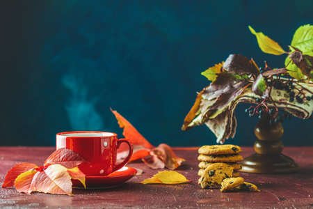 Red in white dotted cup of hot tea. Autumn teatime composition on dark background with colored leaves and chocolate cookies. Stock Photo