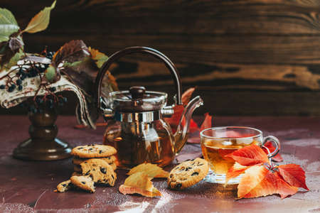 Autumn teatime composition on dark background with colored leaves and chocolate cookies, sun light beam on the cup behind the glass with water dew drops, selective focus 写真素材