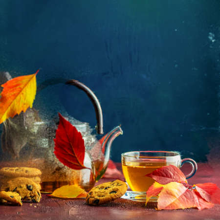 Autumn teatime composition on dark background with colored leaves and chocolate cookies, sun light beam on the cup behind the glass with water dew drops, selective focus Stock Photo