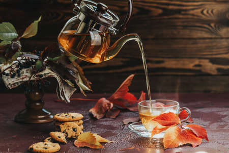 Pour hot tea in glass cup. Autumn teatime composition on dark background with colored leaves and chocolate cookies, sun light beam on the cup.