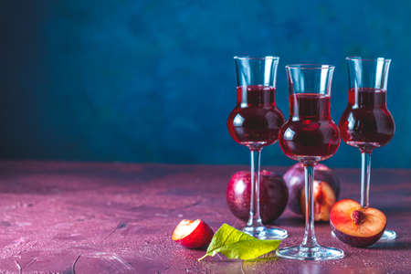 Plums strong alcoholic drink in grappas wineglass with dew. Hard liquor, slivovica, plum brandy or plum vodka with ripe plums on dark blue and claret bordeaux concrete surface