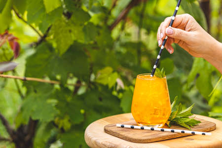 Woman hand holding drinking straw over orange drink with ice on summer sunny garden background. Fresh cocktail drinks with ice fruit and herb decoration.  Stock Photo