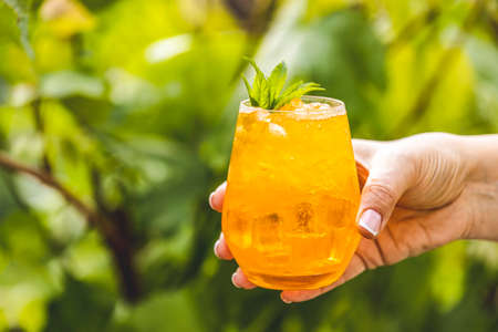 Woman hand holding orange drink with ice on summer sunny garden background. Fresh cocktail drinks with ice fruit and herb decoration.