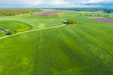 Crop and agriculture concept, drone flying over field countryside at sunny cloudy spring time. Wonderful aerial video for ecological concept Stock Photo