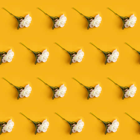 Creative layout made with white peony flowers on yellow background. Flat lay. Flower composition 写真素材