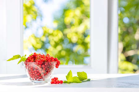 Ripe red currant with water drops and green leaves in glass dish on white wooden table near widow. Green sunny garden out focus behind window. 写真素材