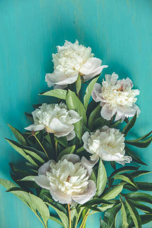 Flat lay composition with white peony flowers on wooden turquoise table surface 写真素材