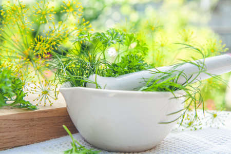 Mortar and pestle with fresh green herbs spices. Fresh dill, parsley, arugula in the pestle and garlic on the table. Herbs and spices on wooden board and white towel. Stock Photo