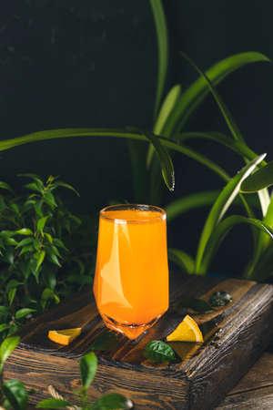 Citrus cocktail, orange juice, summer orange lemonade in highball glass surrounded decor in dark fresh tropic style, backlight, close up, shallow depth of the field. Stock Photo - 166705731
