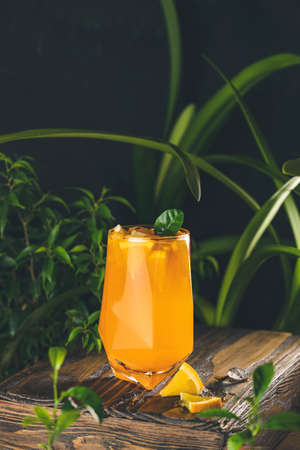 Citrus cocktail, orange juice, summer orange lemonade in highball glass surrounded decor in dark fresh tropic style, backlight, close up, shallow depth of the field.