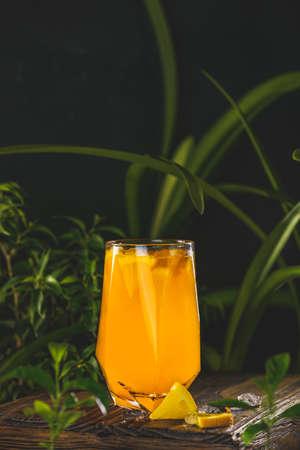 Citrus cocktail, orange juice, summer orange lemonade in highball glass surrounded decor in dark fresh tropic style, backlight, close up, shallow depth of the field. Stock Photo - 166705895