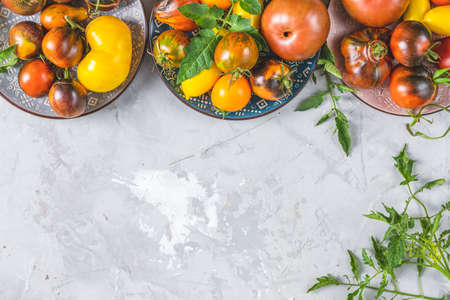 Colorful raw tomatoes in ceramic plates on light gray concrete surface. Concept of green house life style and products of subsistence farming, flat lay, copy space for you text Standard-Bild