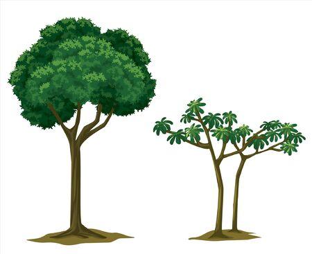 big trees for garden decoration Ilustração