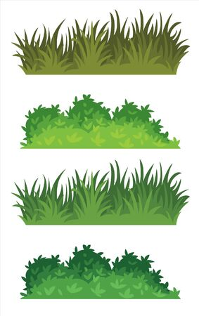 beautiful grass for garden decoration Banco de Imagens - 150528529