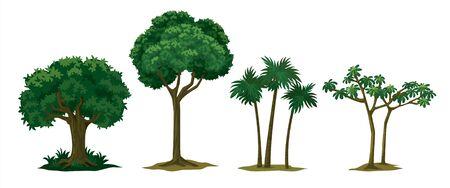different types of trees Banco de Imagens - 150528530