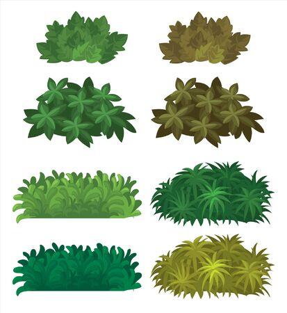 different types of bushes Ilustração