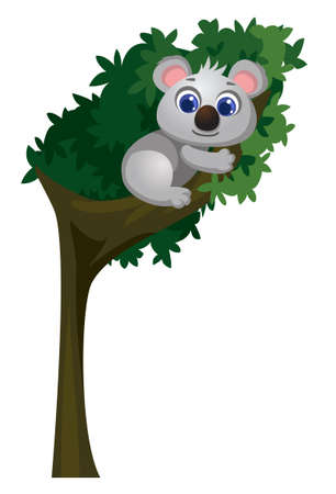 cute koala cartoon