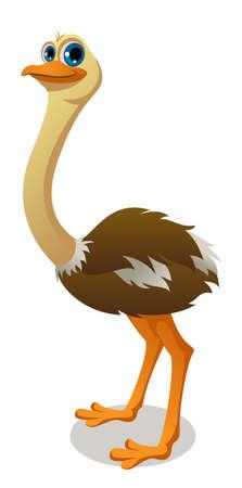 an ostrich cartoon Ilustração
