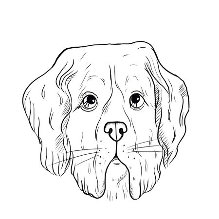 Illustration of a dog. Guide dog, disability assistance dog. Portrait of a dog - hand-painted illustration of pets. Good for banner, t-shirt, postcard.