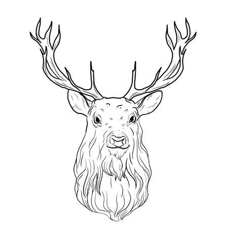 Illustration of a deer on a white background