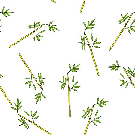 bamboo seamless pattern on white background