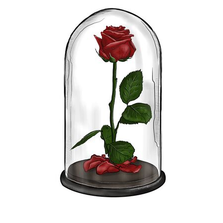 Illustration of a red rose in a glass flask. Фото со стока - 137887215
