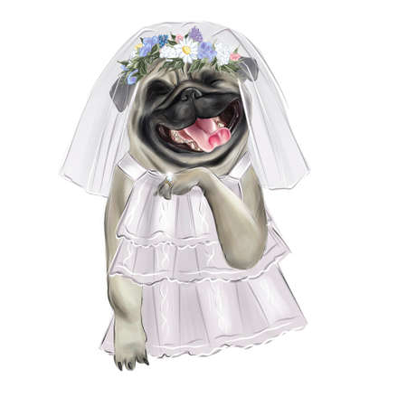 Illustration of a contented pug breed dog in a wedding dress.
