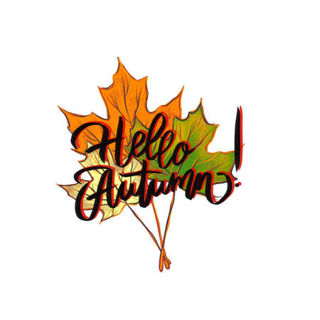 Hand drawn typography lettering phrase Hello Autumn! isolated on white background. Fun calligraphic ink brush lettering for photo overlays, greeting and invitation cards or t-shirt design.